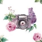 Photographe- Professionnels du mariage- Alliance Rêvée