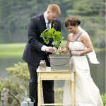 tree- wedding ceremony- Alliance Rêvée