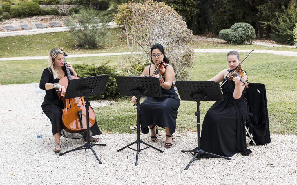 Mariage Provence-Musique live mariage- Alliance Rêvée